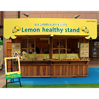 Lemon healthy stand
